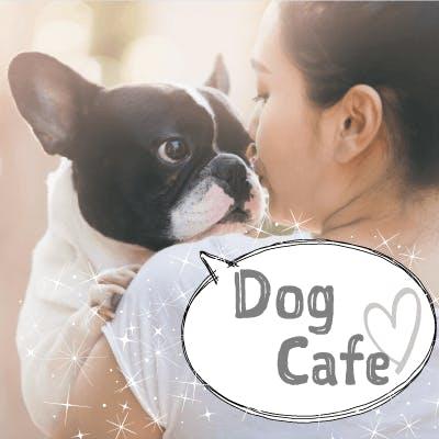 「《恋する♡癒しの犬カフェコン》同年代でお話好きの明るい性格の男女♡」の画像1枚目