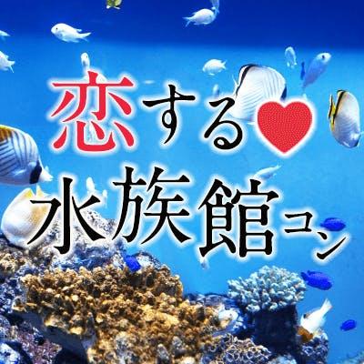 「開催確定♡大人が楽しめる水族館コン♪《アクアパーク品川》幻想空間で出逢う♡」の画像1枚目